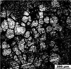 一种单质铜包覆多壁碳纳米管/铝基复合材料半固态坯料的制备方法